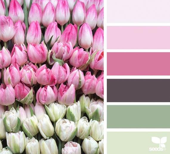 Design Seed image courtesy of design.seeds.com